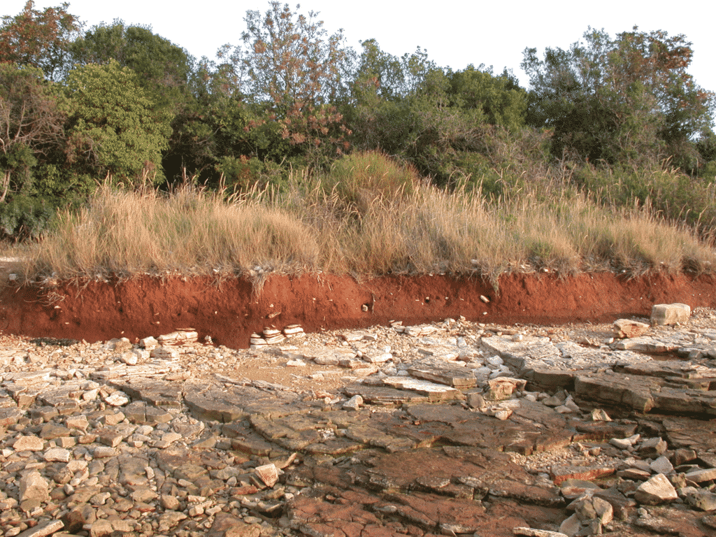 Outcrop of terra rossa (red layer) settled on Mesozoic limestone  at seashore of Peroj, South (Red) Istria (Locality of field sample IST-15).