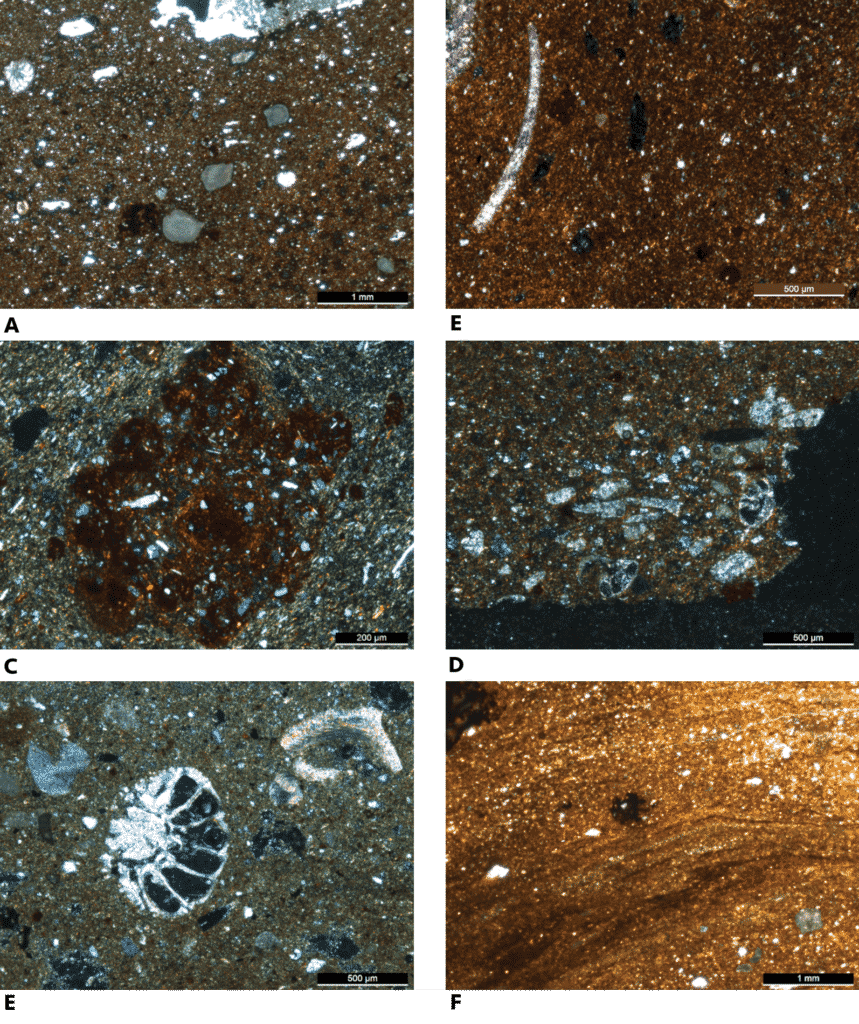 Clichés de lames minces de tessons d'amphores Dr 6B et d'un sédiment argileux, observées en lumière blanche transmise.