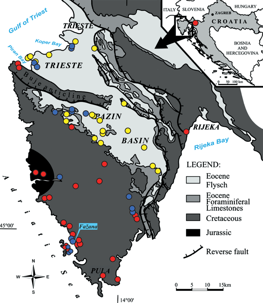 General geologic map of Istria with sampling localities (Modified map after Živkovic and Bogner (2006).