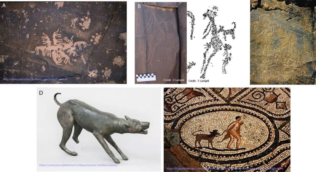 """Représentations de """"Chiens"""" (Canis lupus familiaris) :a-b. Représentations rupestres de l'Atlas : a. """"Chiens à la curée"""" de Tit Metlili ; b. femme et enfant juxtaposés à un Chien (Lemjidi, 2018) ; c. deux Hommes-Chiens du Messak Libyen (van Albada and van Albada, 2000) ; d. statuette de Chien de Volubilis ; e. Chien tenu en laisse sur une mosaïque de Volubilis."""