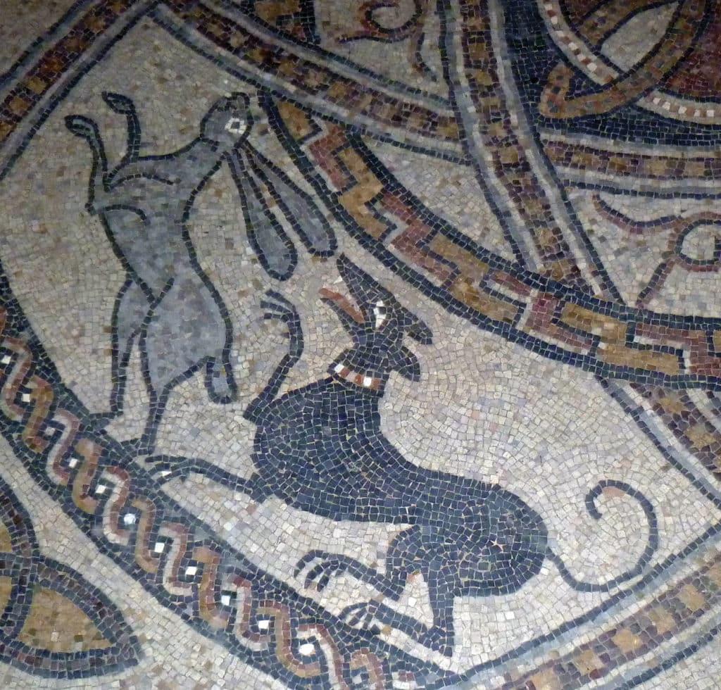 Scène de chasse représentant un chien poursuivant un lièvre (fin du XIe - début du XIIe siècle, mosaïque romane du chœur de l'abbatiale Saint-Jean de Sorde à Sorde-l'Abbaye (Landes) (Cliché S. Faravel)
